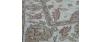 Ziegler Tapijt 6 183 x 280